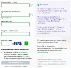 Регистрация и вход в личный кабинет ТНС энерго Великий Новгород